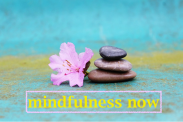 www.mindfulnessnow.co.uk